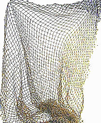 Fishing Net Images
